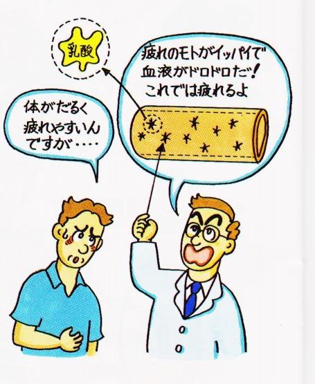 糖尿病 乳酸 血液ドロドロ