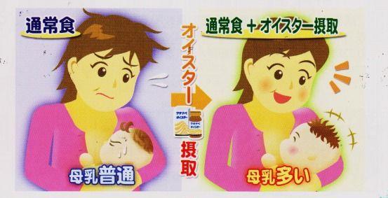 オイスター 母乳