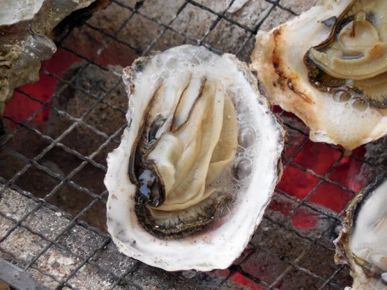 牡蠣 オイスター 栄養の宝庫