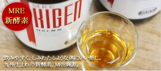 MRE輝源 MRE新酵素 ニューザイム