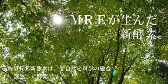 MRE 新酵素